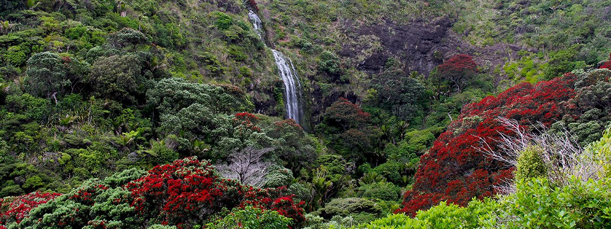Karekare Falls, Nuova Zelanda