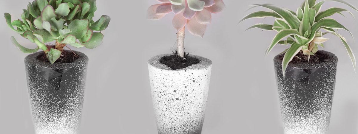 http://www.oddgarden.com/works/odd-garden-succu…-drop-bw-edition/ 